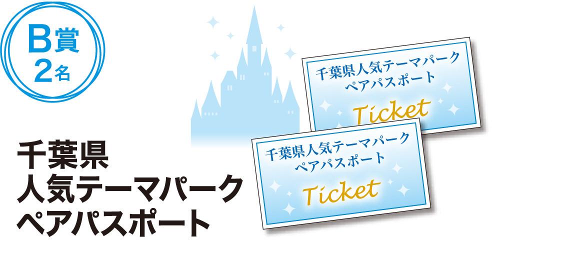 千葉県人気テーマパークペアパスポート B賞2名